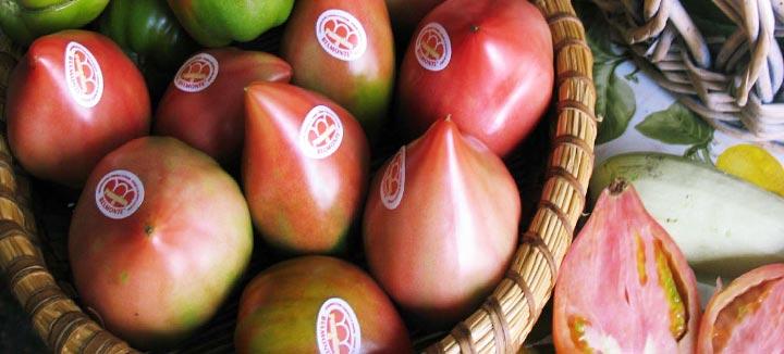 Pomodoro di Belmonte